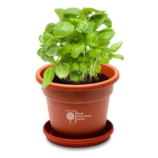 Grande Planter Kit