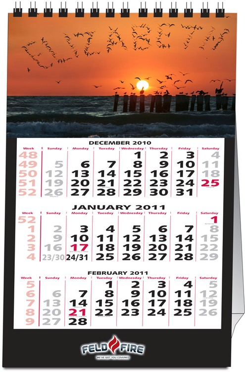 Personalized Vertical Tent Calendar (12 Pictures)