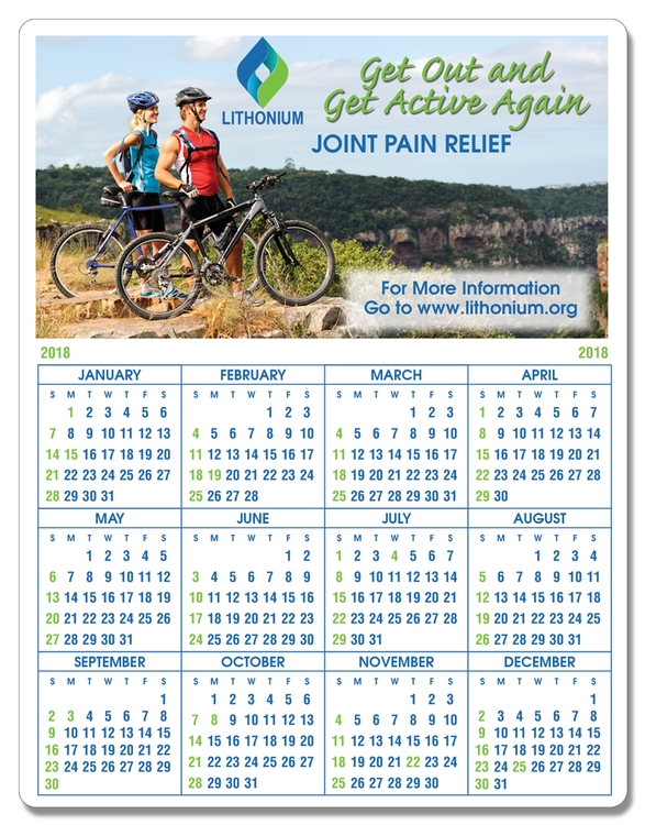Plastic Year-at-a-Glance FULL Color Wall Calendar