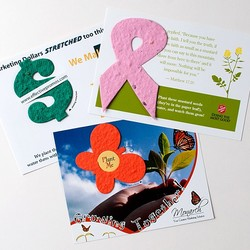 Lil' Bloomer Postcard (PP)