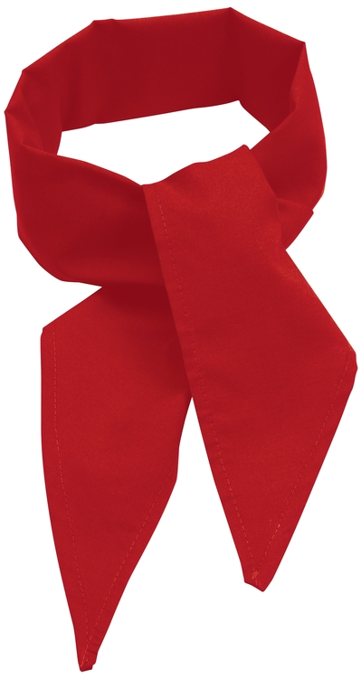 C22 Poplin Neckerchief Red