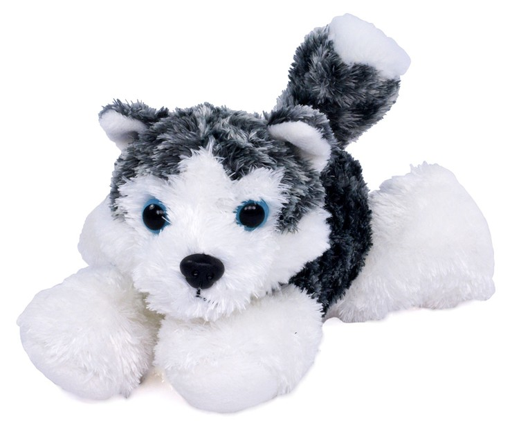 8 Mush Husky Dog