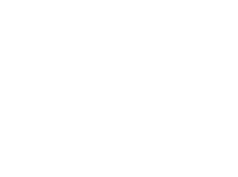 panhandle llogo.png