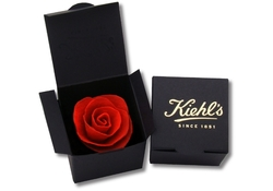 Seeded Paper Rose - Single Rose in Gift Box