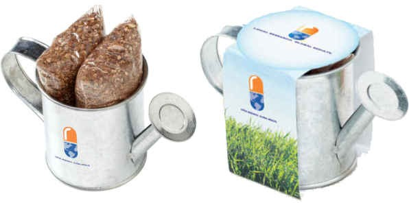 Watering Can Planter with Choice of Seeds