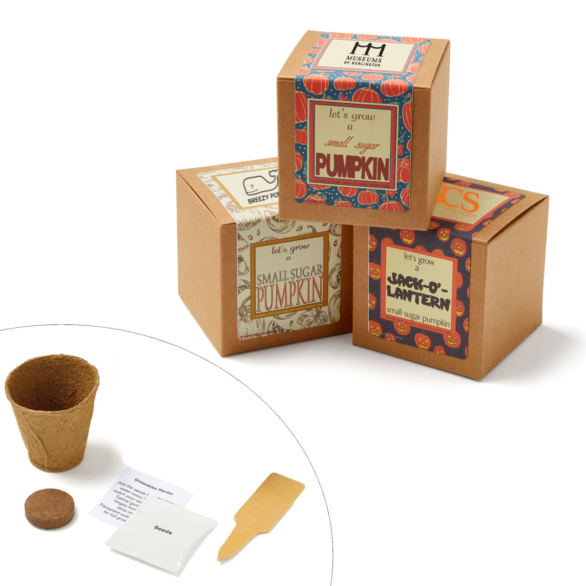 Gephart Marketing Solutions  sc 1 st  Gephart Marketing Solutions & Small Sugar Pumpkin Growables Planter in Kraft Gift Box - JK-1568 ...