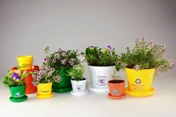 Mini (2 1/8) Logo Planter Kit with Herb, Flower, or Tree Seeds