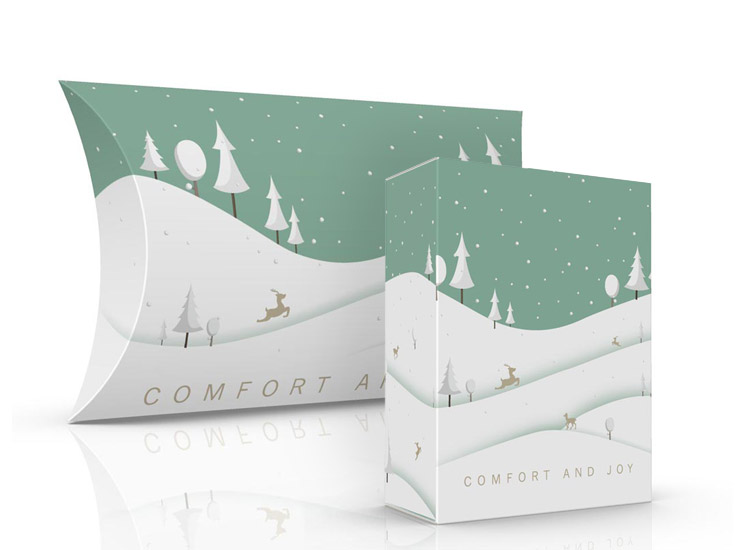 Christmas gift box packaging