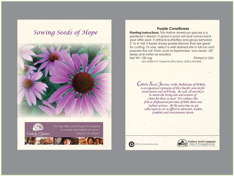 Purple Coneflower Seed Packet - Imprinted Seed Packet