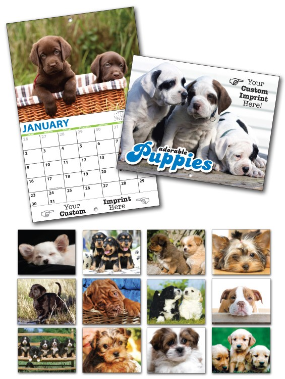 13 Month Custom Appointment Wall Calendar - PUPPIES