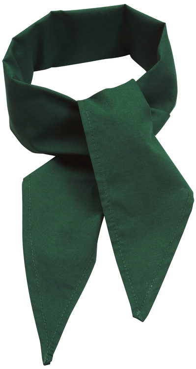 C22 Poplin Neckerchief Hunter Green
