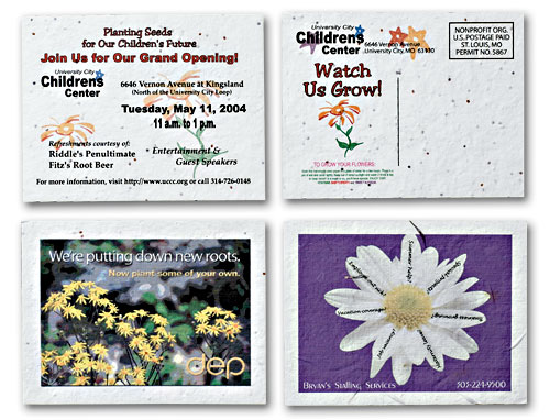 Seeded Paper Postcards