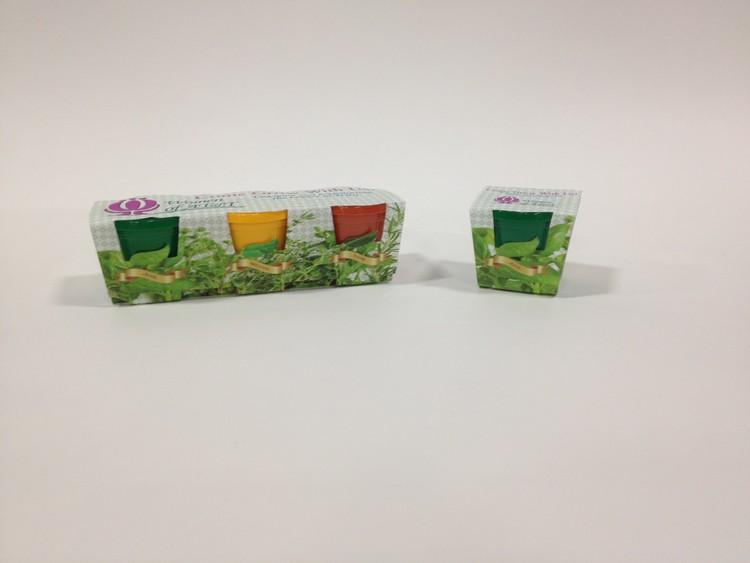 3 Pack Herb or Flower Grow Kits