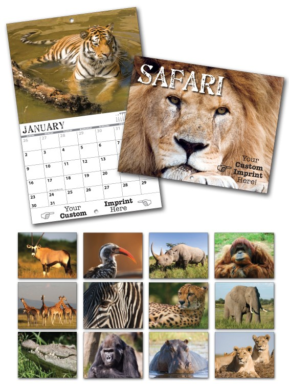 13 Month Custom Appointment Wall Calendar - SAFARI