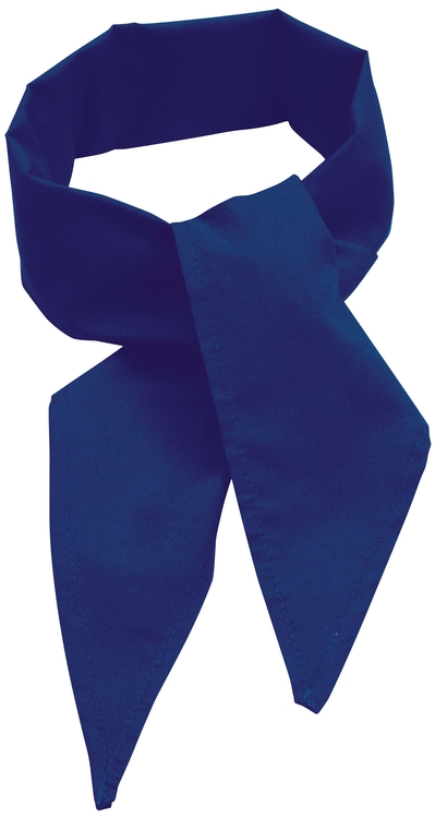 C22 Poplin Neckerchief Royal Blue