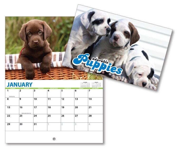 13 Month Mini Custom Photo Appointment Wall Calendar - PUPPIES