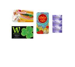 4-Color Business Card Magnet - 4-Color 2 x 3-1/2 Magnets