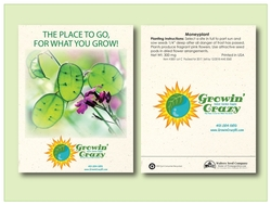 Moneyplant Flower Seed Packet - Imprinted Seed Packet
