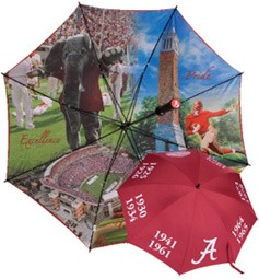 Custom 62-Inch Folding Umbrella With Full Color Printing