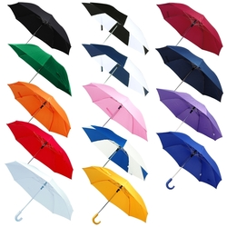 The 41 Auto Open Folding Umbrella with Hook Handle