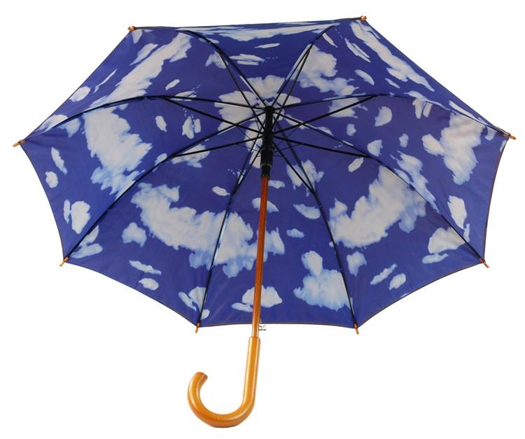 The 48 Sky Double Layered Umbrella