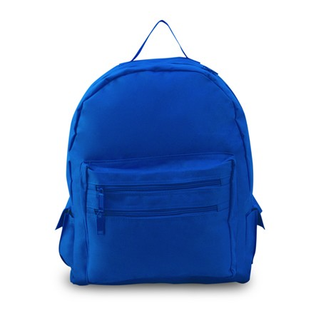 Budget Backpack- Eco Friendly