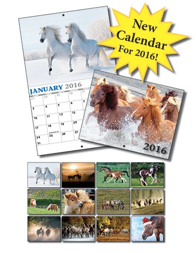 13 Month Custom Appointment Wall Calendar - HORSES