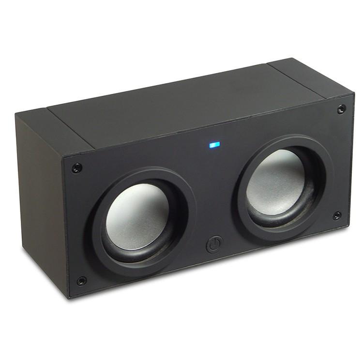 4128SPK - Induction Speaker