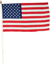 12 in. x 18 in. USA Stick Flags Rx