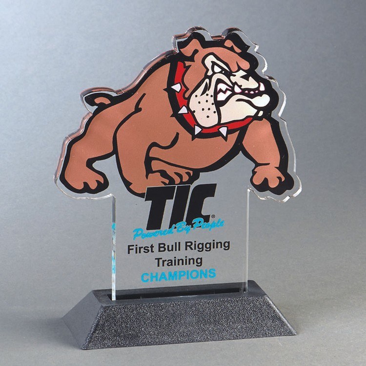 BULLDOG Snappy up to 24 sq.in. Any Shape Acrylic In A Base