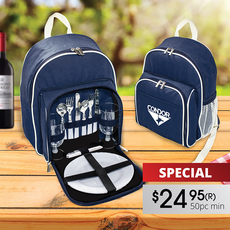 2-PERSON PICNIC BACKPACK SET