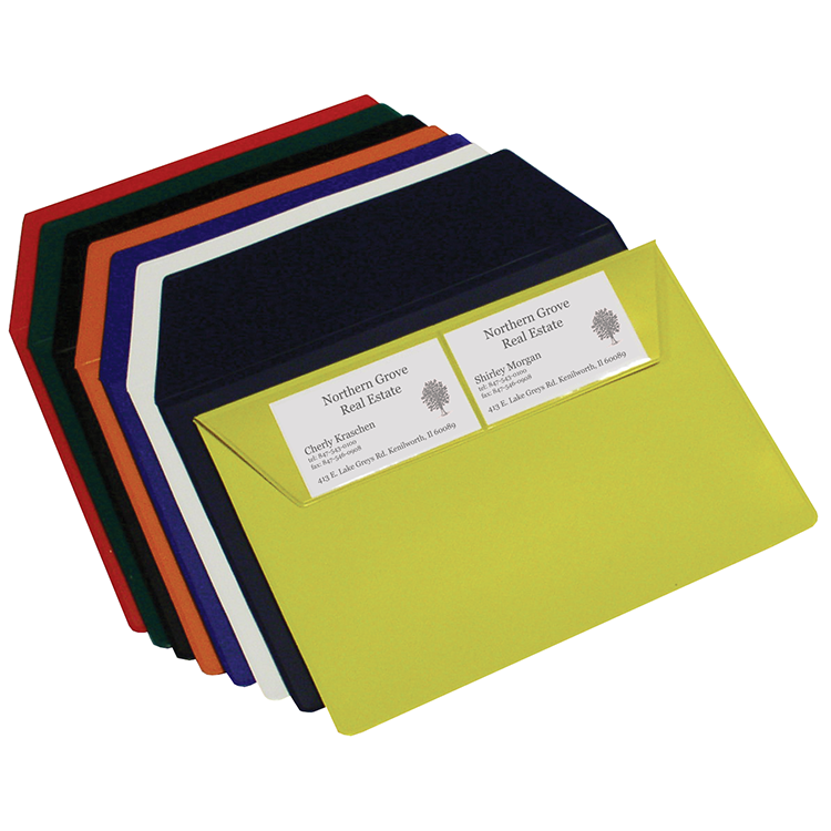 Vinyl Envelope with Business Card Flap (Made in USA) 9-3/4