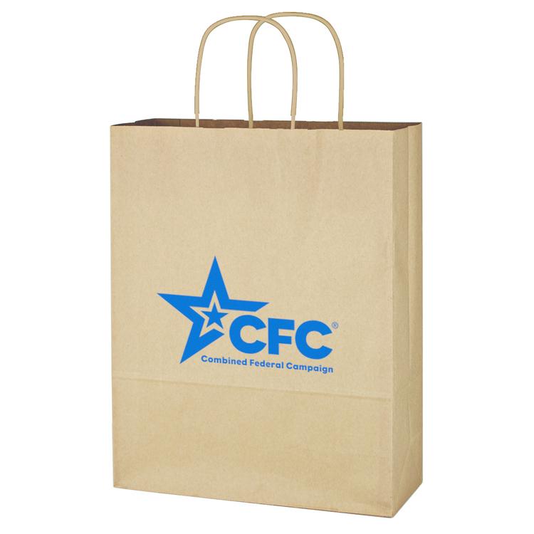 Kraft Paper Brown Shopping Bag - 10