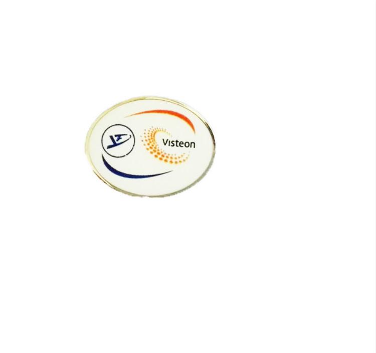 Visteon Pin Badge Accessoires & Fanartikel