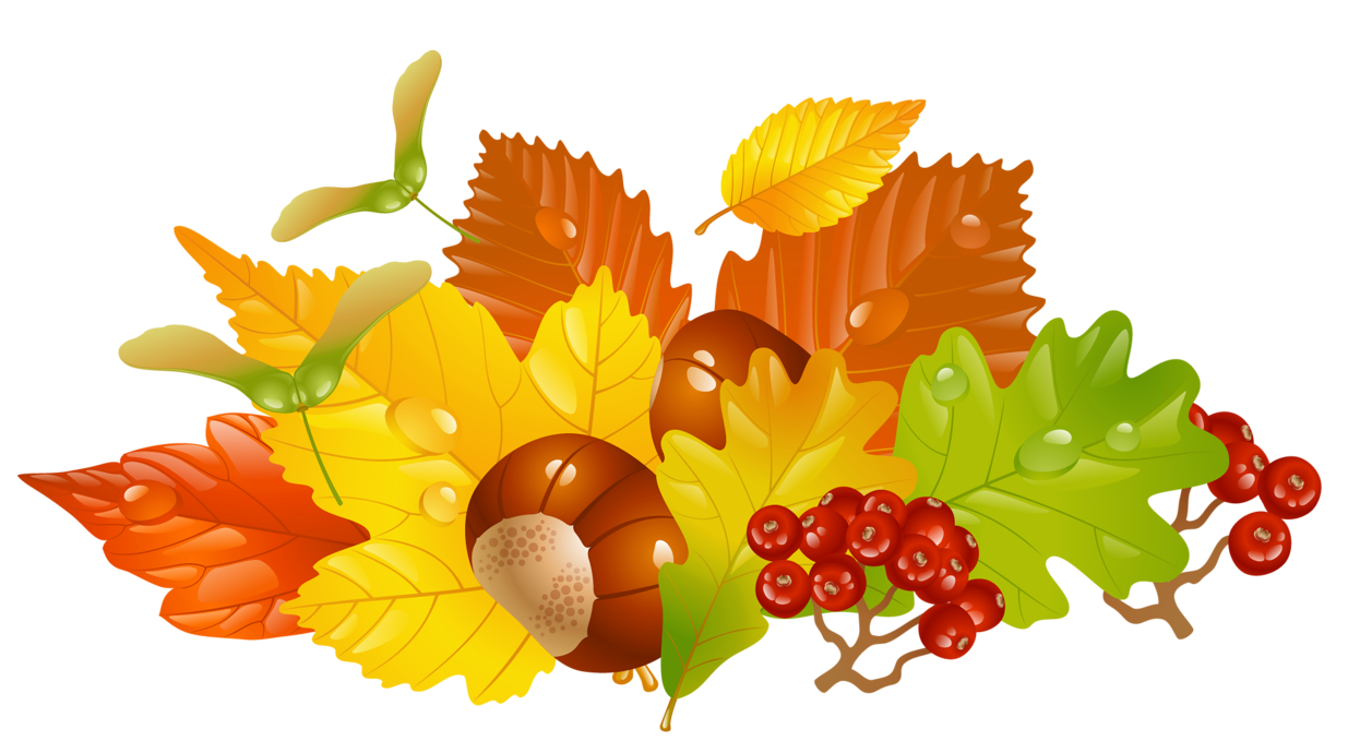 Transparent_Fall_Leaves_and_Chestnuts_Picture.png